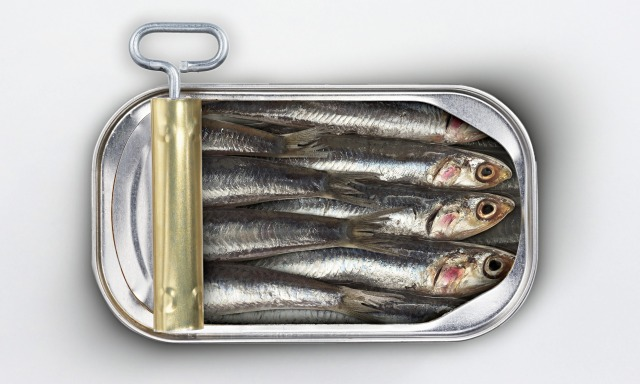 Like-Sardines-in-a-Can-013.jpg
